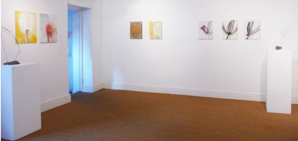 Robert Janz_Installation Shot VIII.jpg