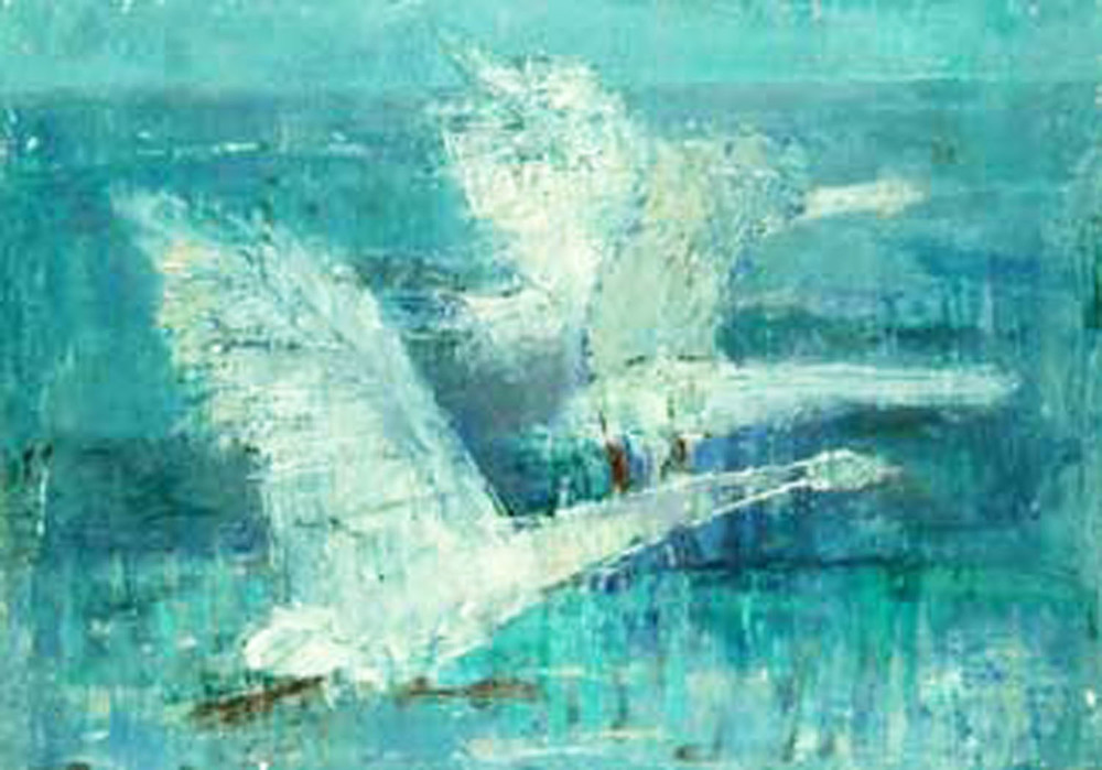Anne Donnelly_-_Swans at Evening_35 x 50cm.jpg