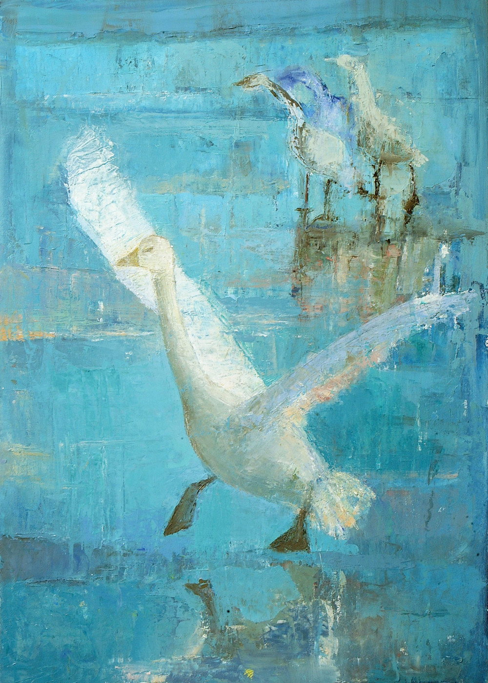 Anne Donnelly_-_Swan about to Fly_oil on canvas_70 x 50cm.jpg