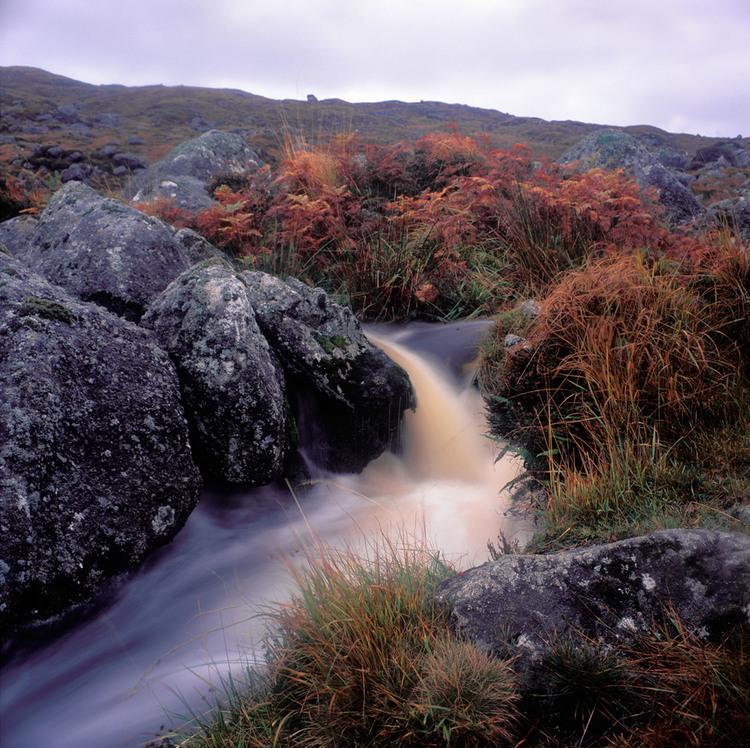 Fergus Bourke_Cloudy River II.jpg