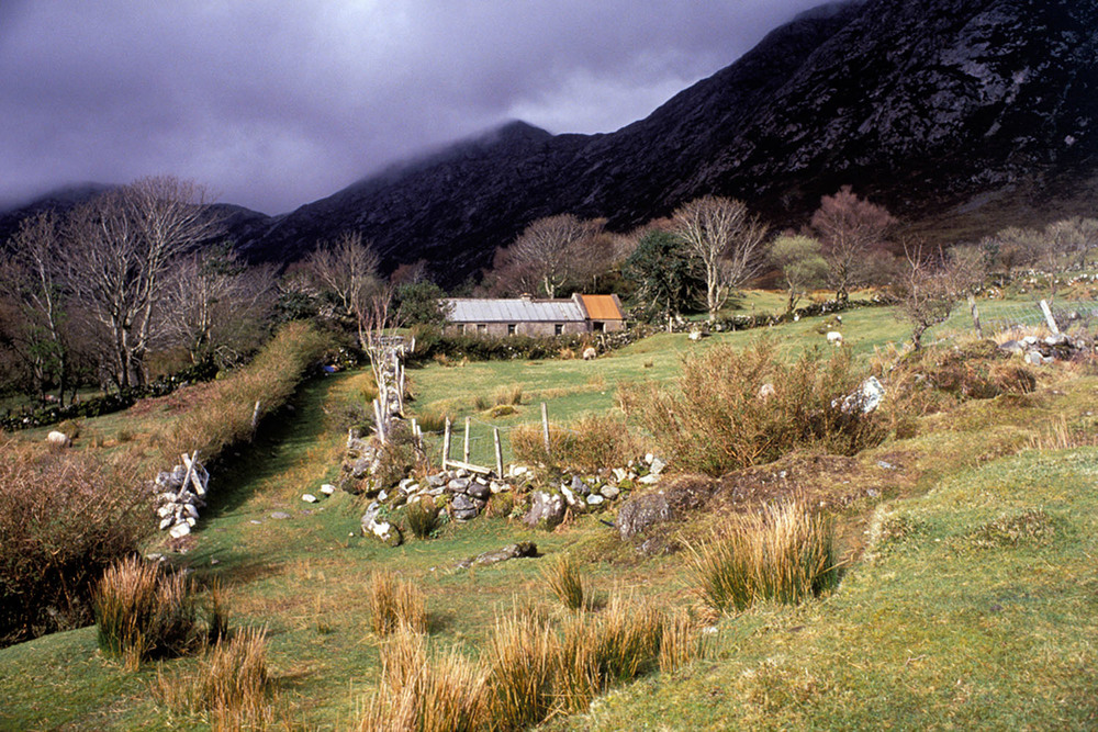 Fergus Bourke_Dwelling, Connemara.jpg
