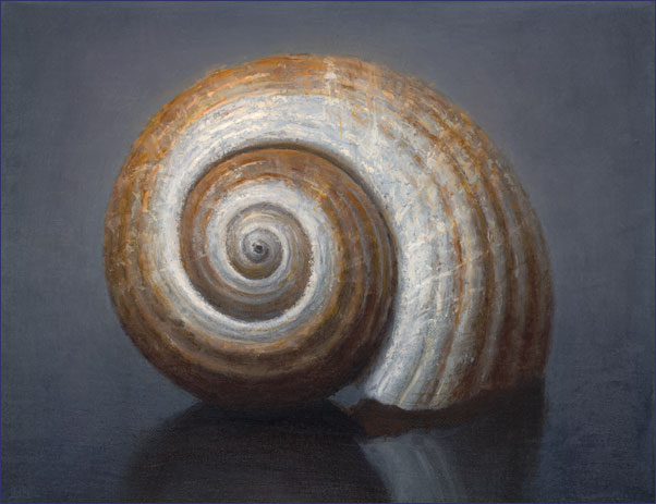 Conor Walton_Shell_2012_oil on linen_18.5 x 24cm.jpg