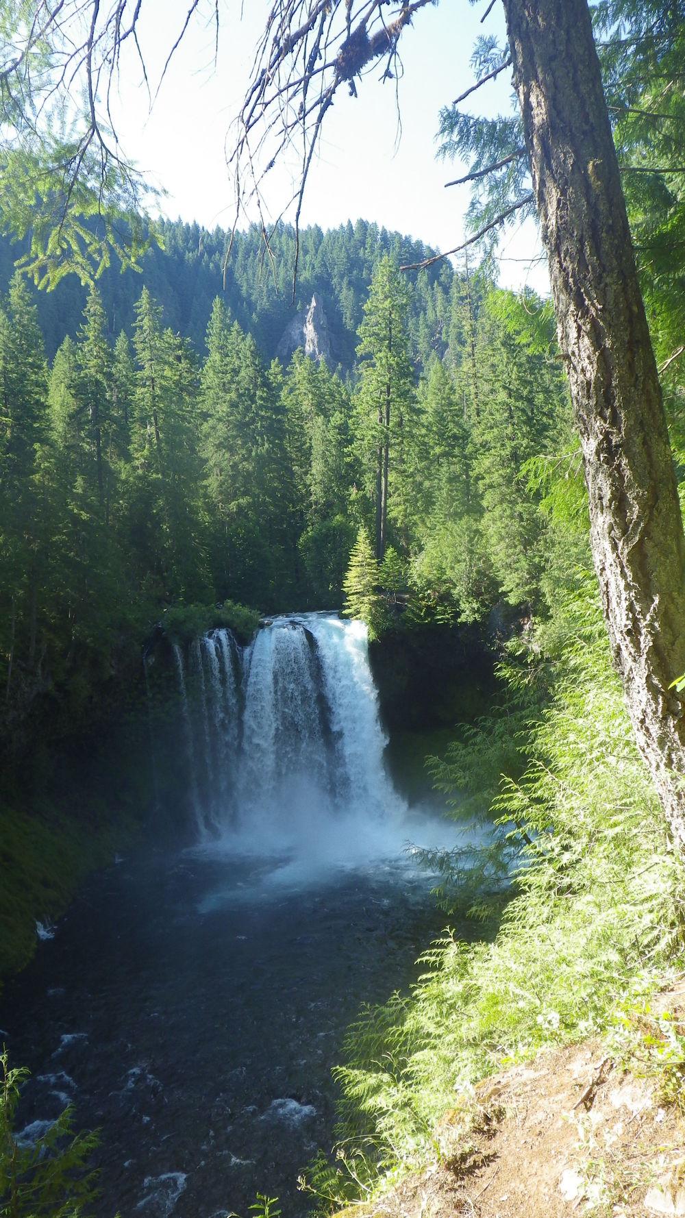 Koosah Falls (click for larger image)