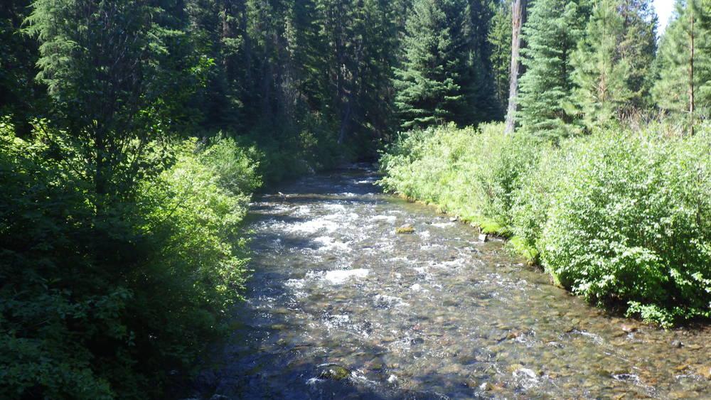 Tumalo Creek flowing through Shevlin Park
