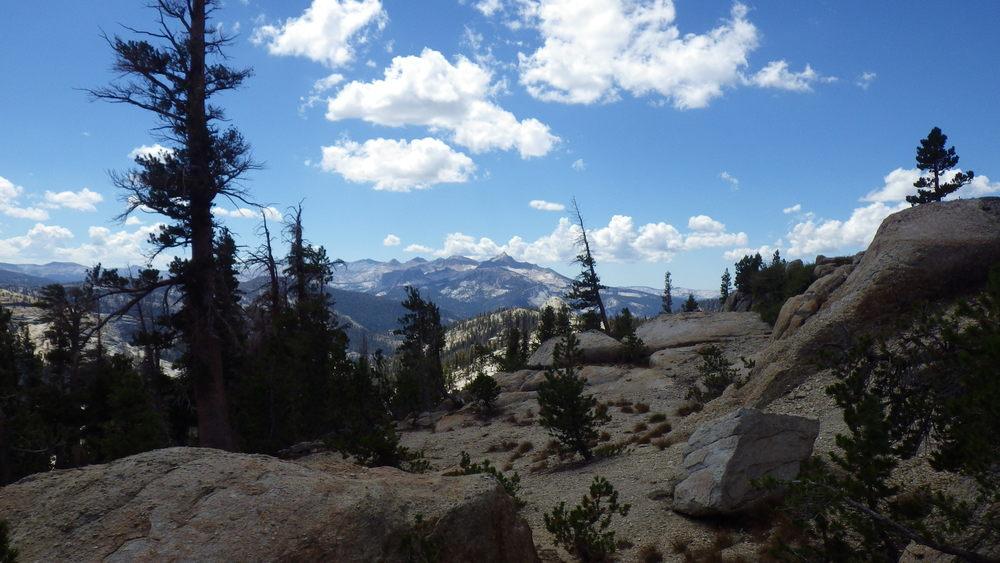 The beauty of Yosemite