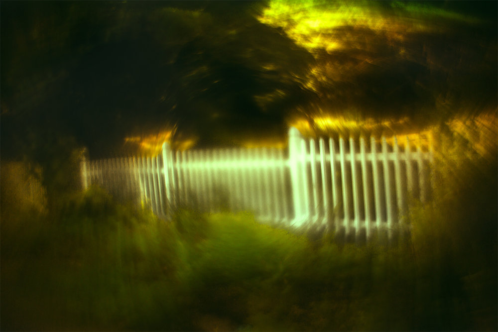 Fence_4956