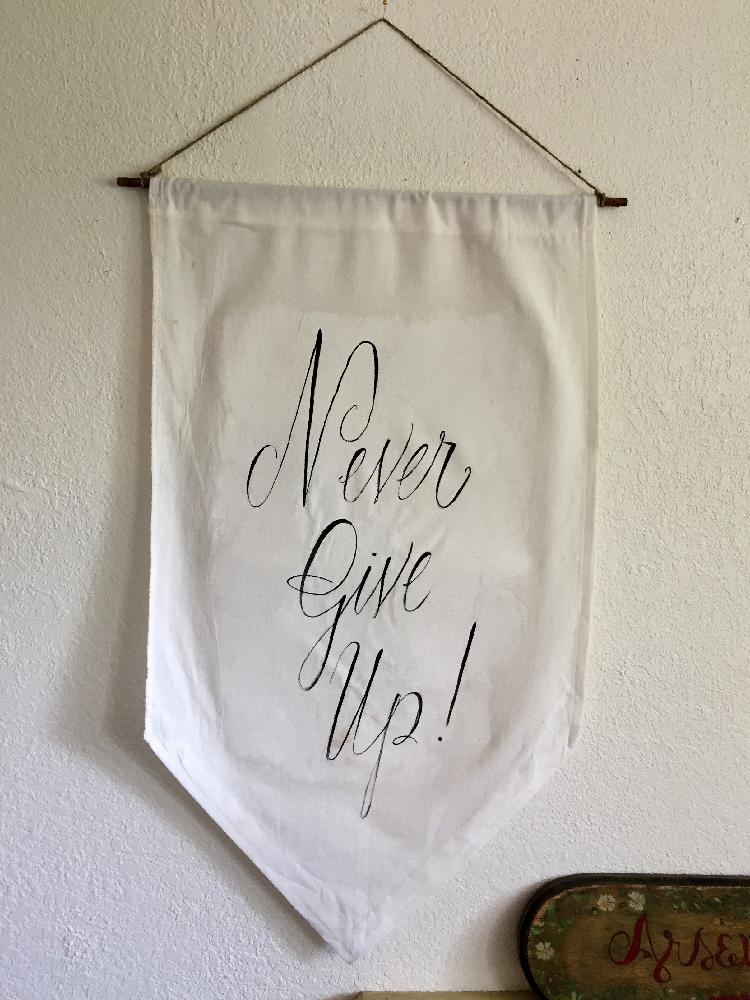 nevergiveup_banner2.jpg