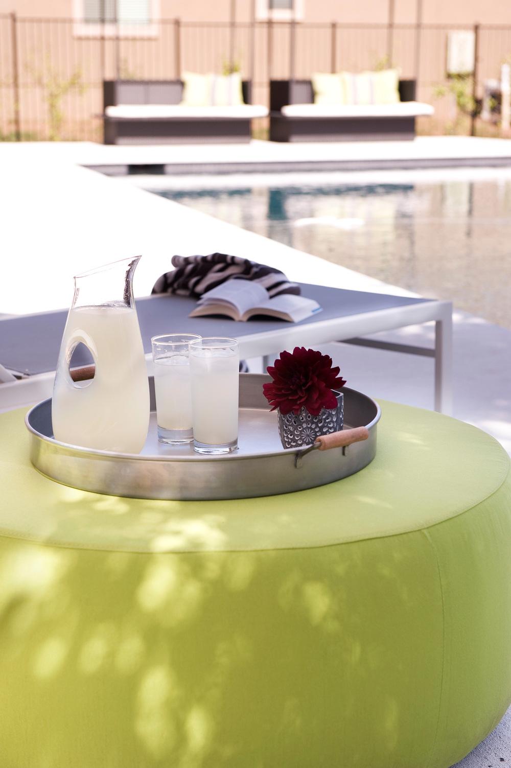 Robin Colton Interior Design Studio Austin Texas Brodie Springs Lemonade on the Ottoman