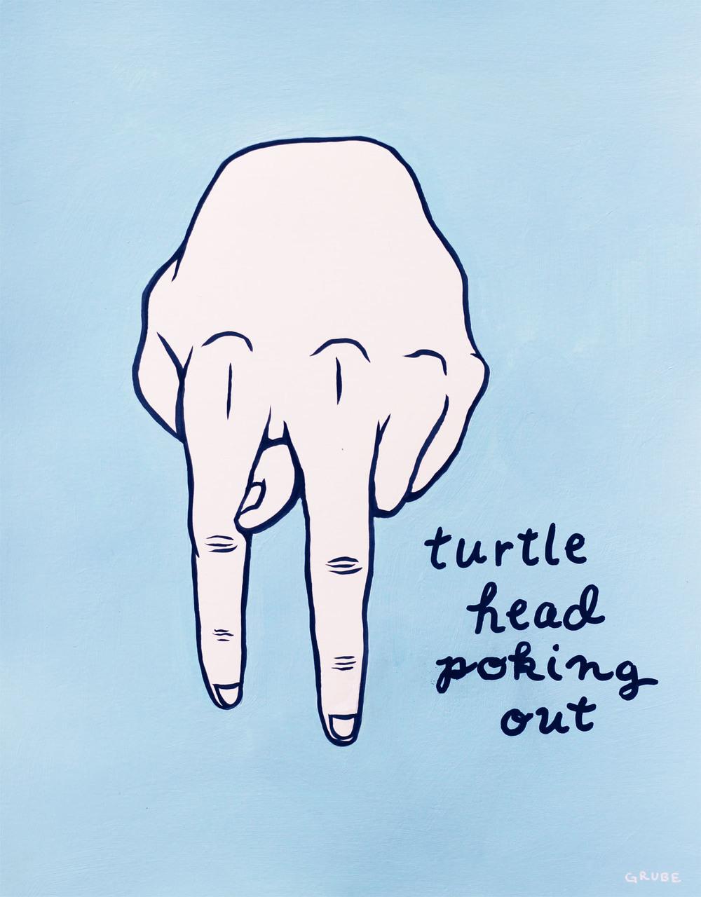 #jason grube #turtle head #fake sign language.jpg