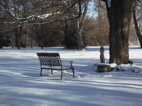 Winter Jan 2011 080.jpg