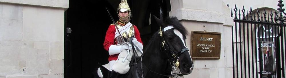 Guard & horse banner.JPG