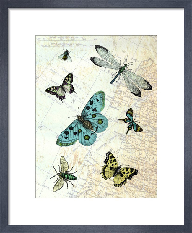 Flying High_framed print from King & McGaw.jpg