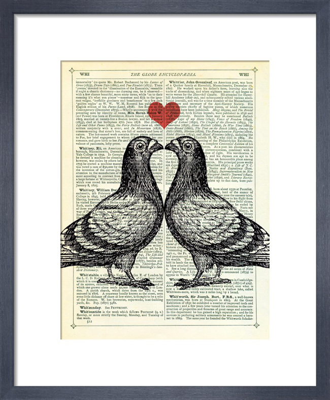 Pigeons in Love_framed print from King & McGaw.jpg