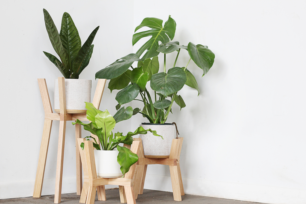 Mavis Cross Planter by Fern Studio
