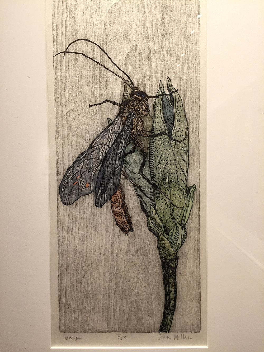 Wasp, color woodcut by Dan Miller