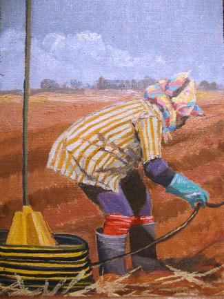 Cane Field Worker 1