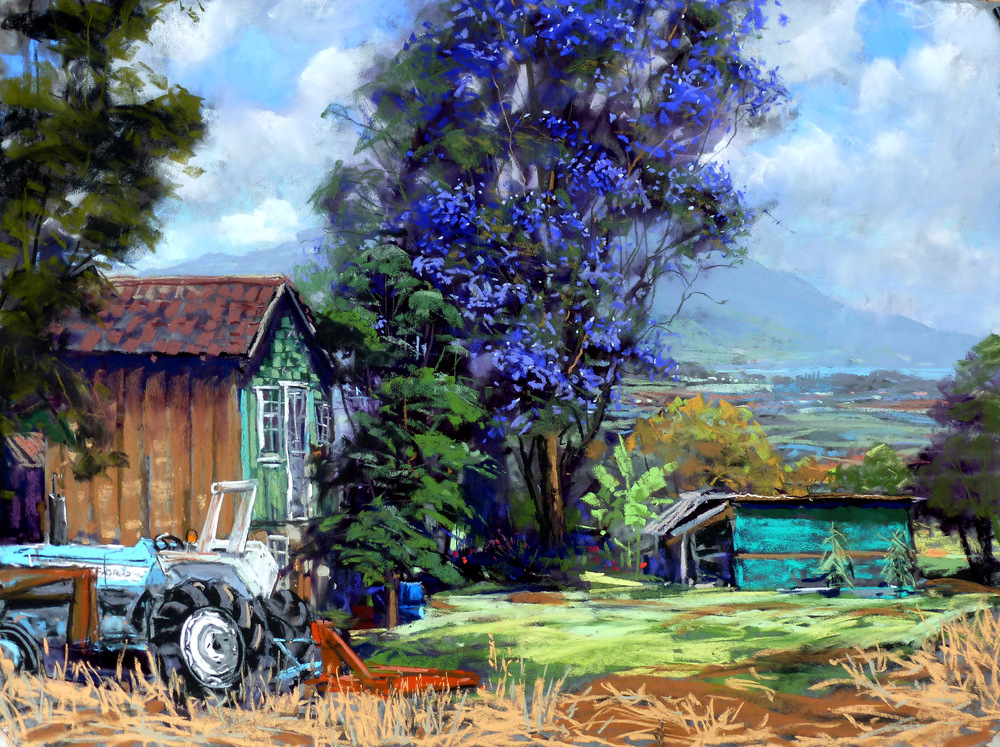Holopuni Road Farm