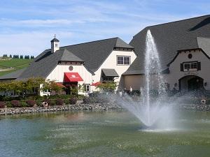 Fountain dancing at Zenith Vineyard on glorious autumn day