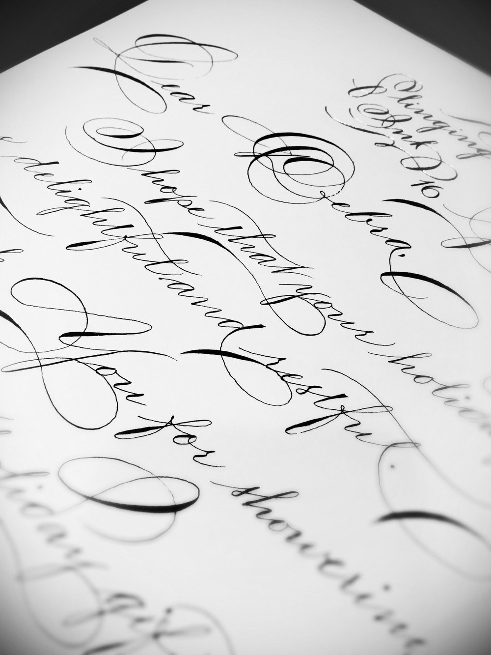 Houston Calligraphy Hand Lettering Penman Slinging Ink Lette.JPG