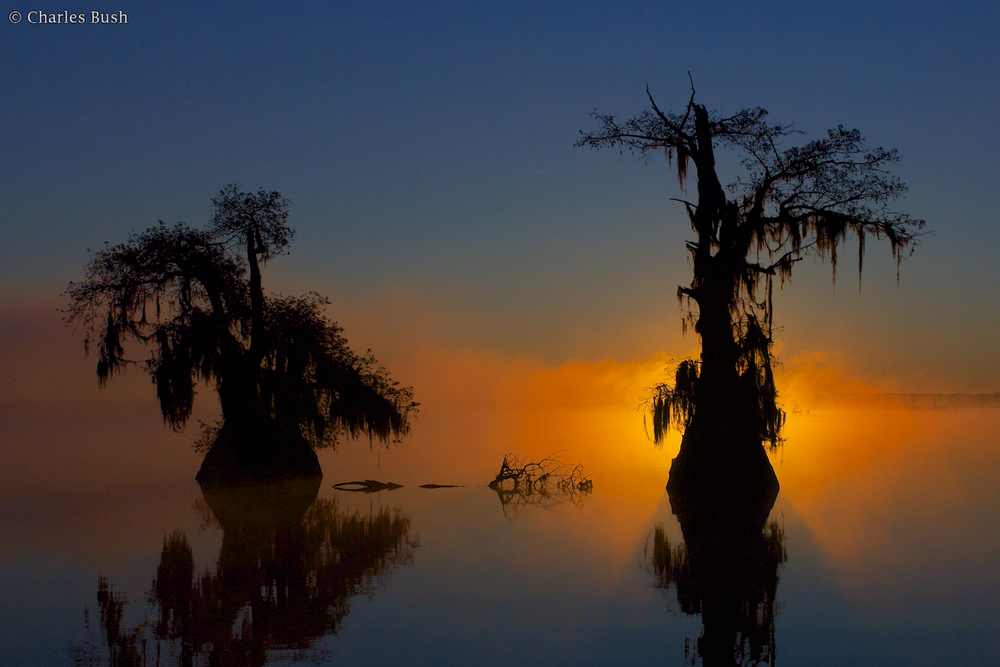 Lake Dauterive Misty Sunrise