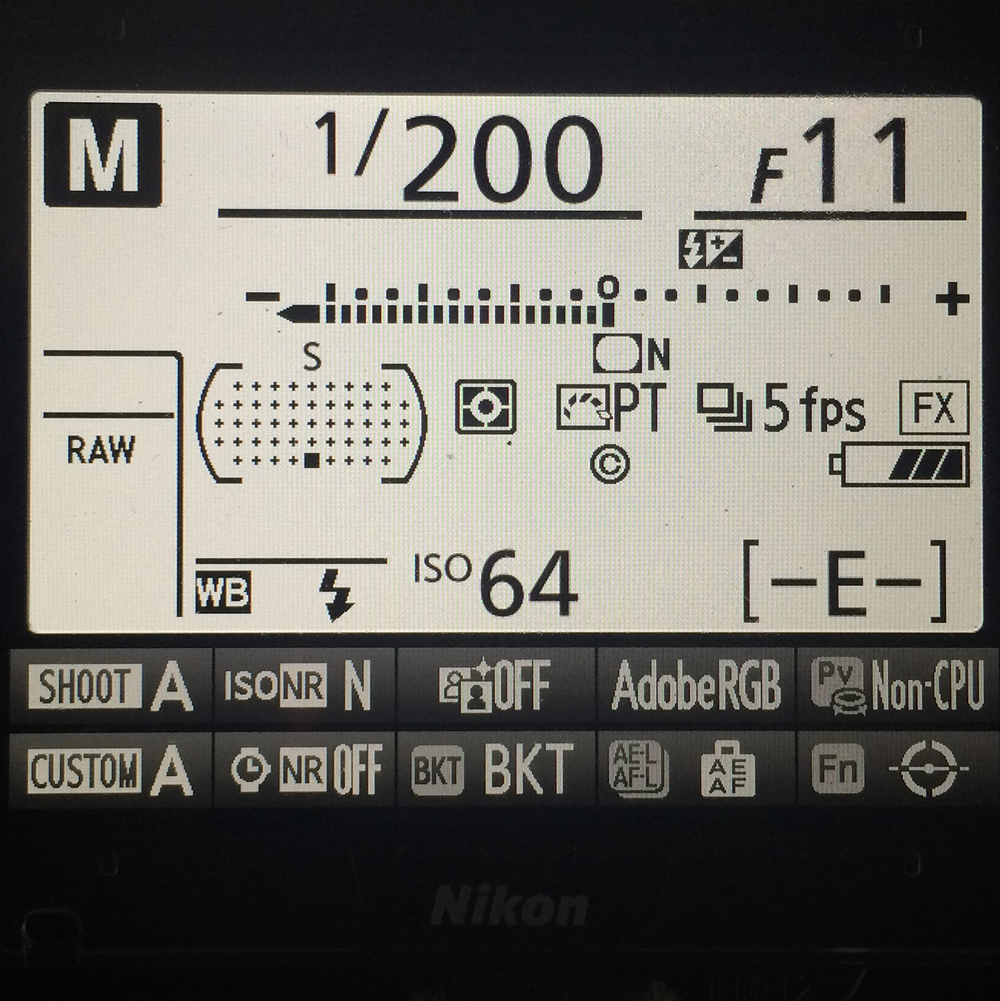 Nikon D810 Info Screen