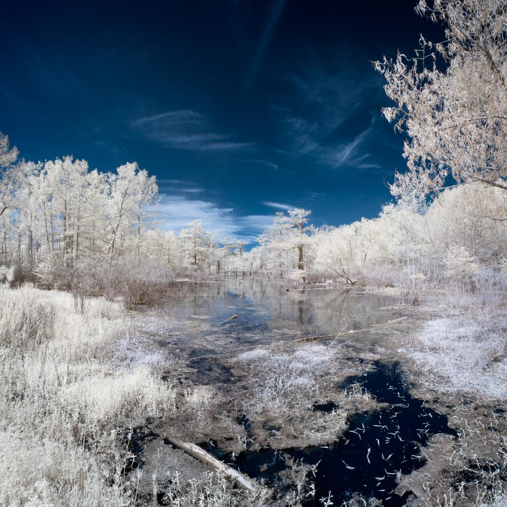 Lake Martin Infrared Photo