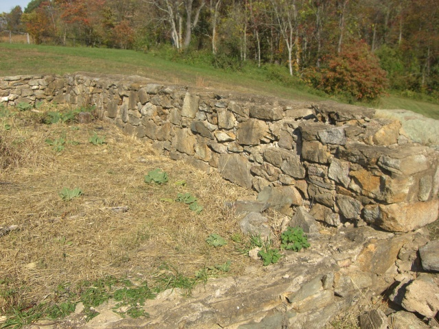 Civil War Damage at Miracle Valley Vineyard