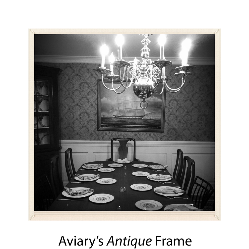 Aviary's Antique Frame
