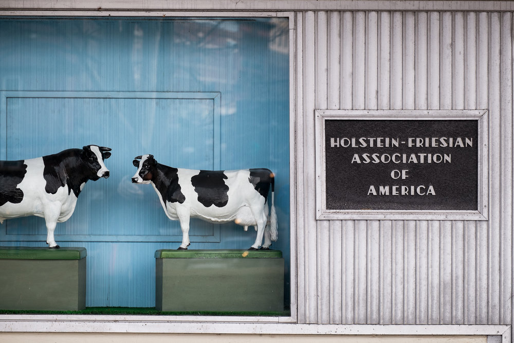Holstein Association