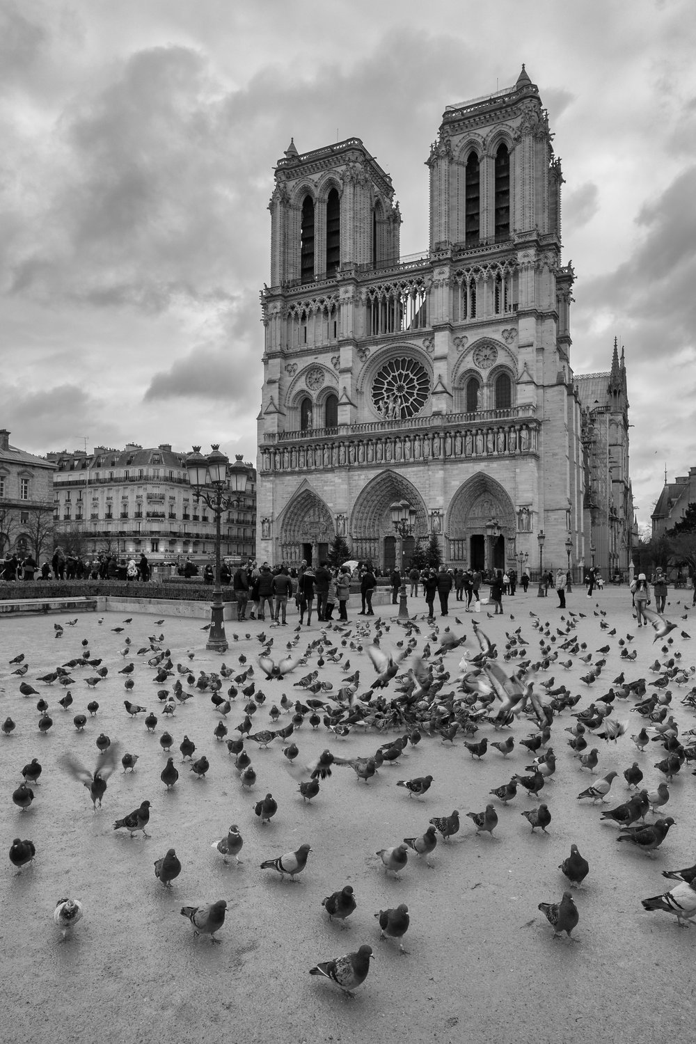 """Flock of tourists."" January 14, 2017. Cathedral Notre Dame. Paris, France Fujifilm X-Pro1, 14mm, f/8, 1/125, ISO 640"