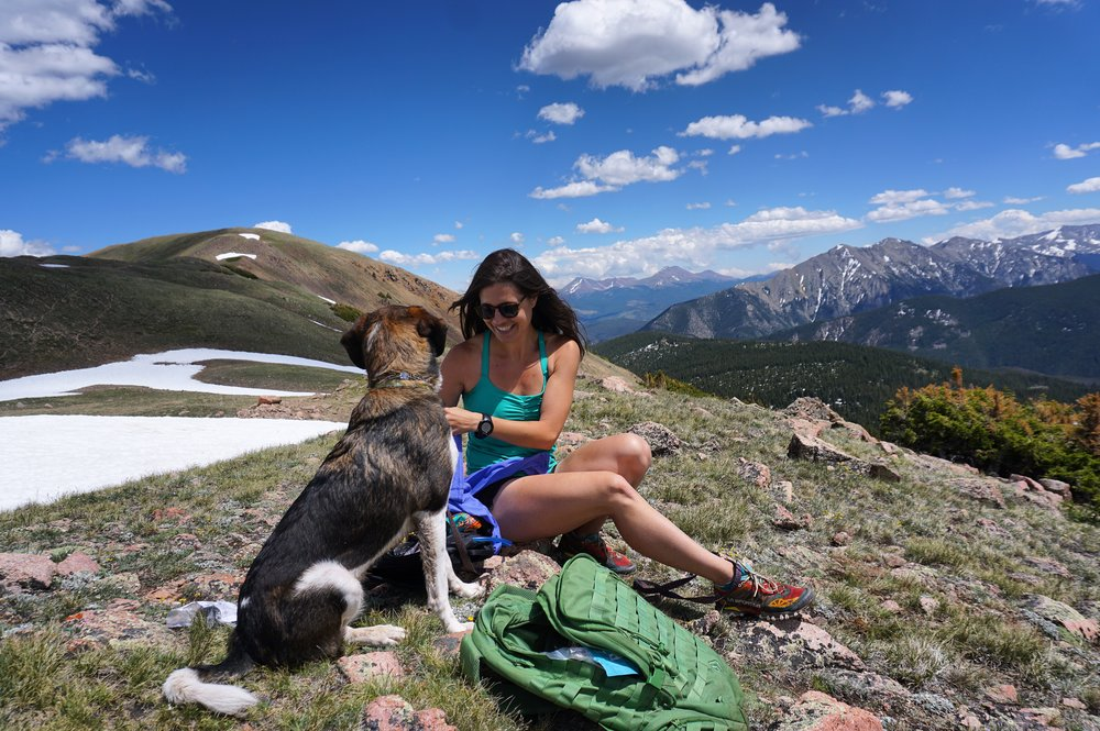 Summit Dog - Emily Olsen.JPG