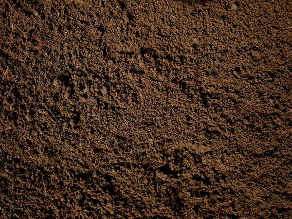 Screened Topsoil.jpg