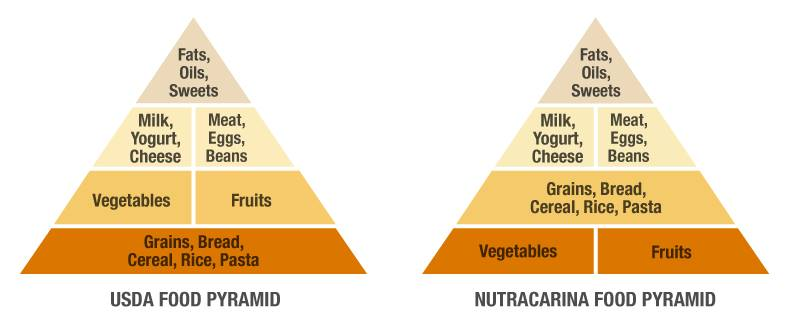 Compare the USDA Food Pyramid with Mike Bewley's NutraCarina Food Pyramid. The foundation for Coach Bewley's nutrition plan for athletes is based on vegetables and fruits.