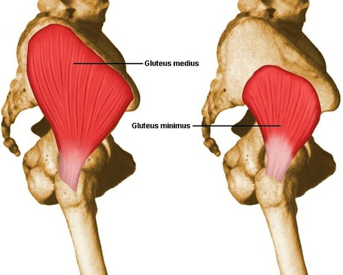 Weak Hips equals bad back and more pain