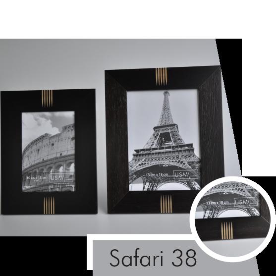 Safari 38.png