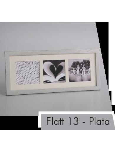 Flatt 13 Plata x3.png