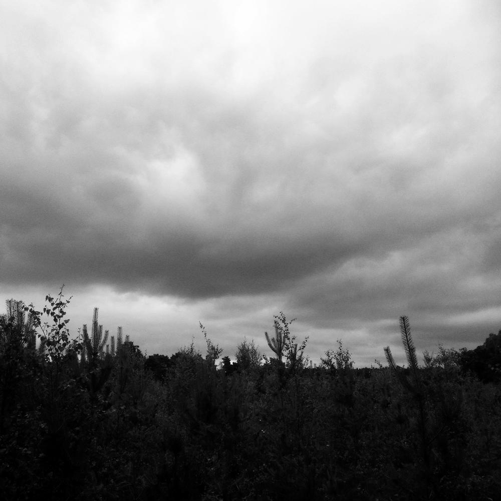 Day 74 - Stormy Weather