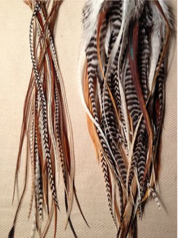 Natural colour feathers available in thin and wider options