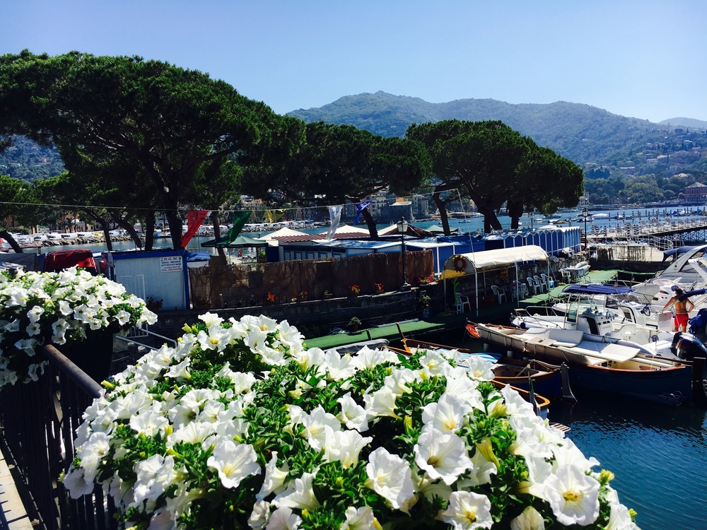 from the harbor of Rapallo Italy with flowers