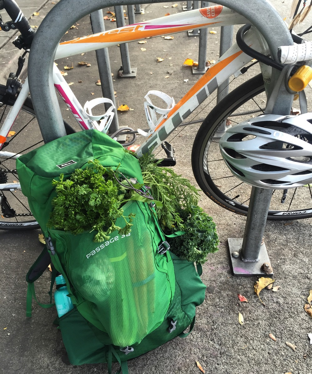 RFPhotoCyclingGroceries