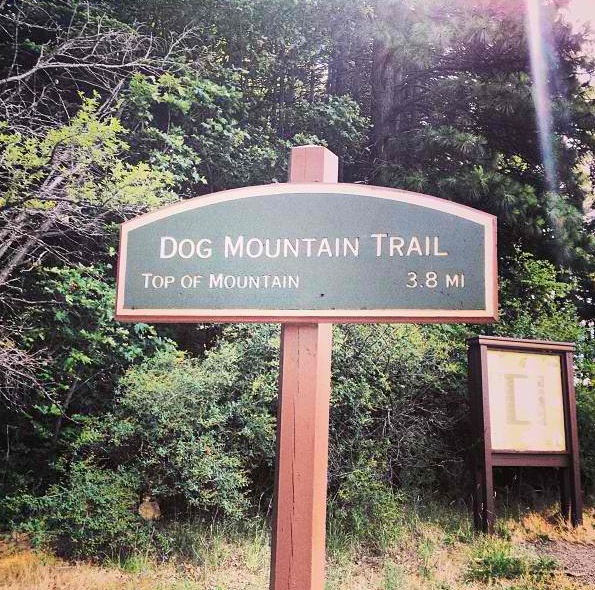 7.1 dog mountain sign.JPG