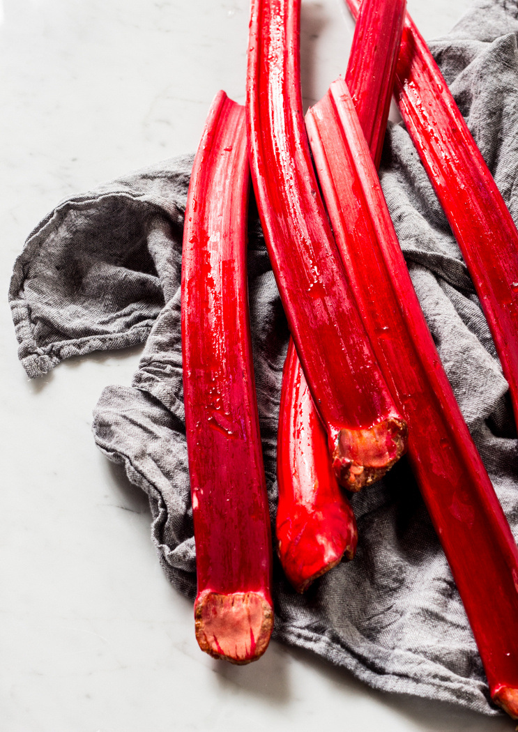 Rose Roasted Rhubarb with Yogurt, Honey + Chocolate