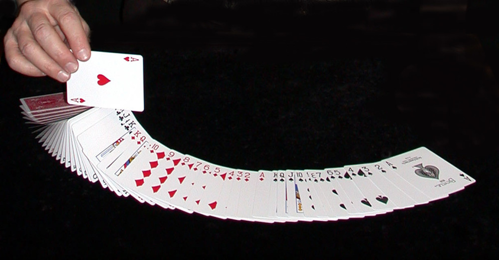 CARD SPREAD.jpg