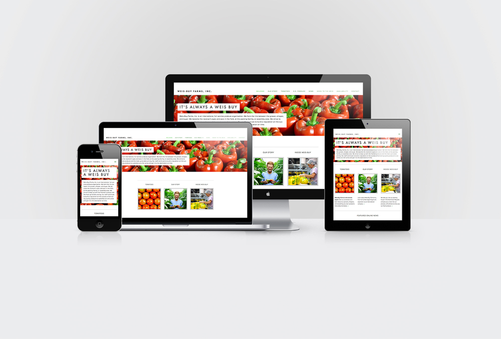 GeenaMatuson_DisplayMockup_WeisBuyProduce_Graphicon_Sm.jpg