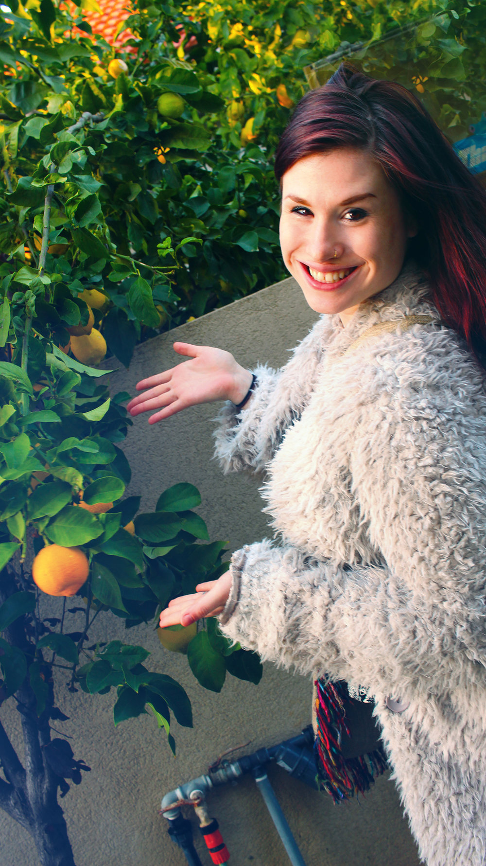 Jessica showcases oranges in the backyard of Nir's family home, celebrating the second night of Hanukkah with Shorashim Israel, 2016.