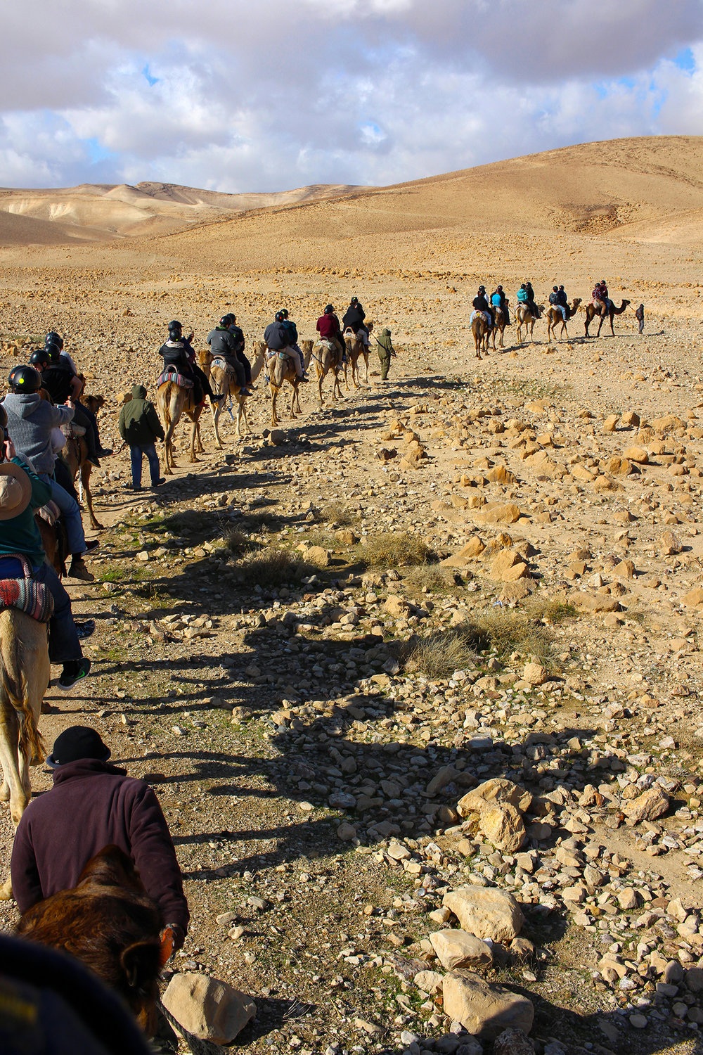 Group camel ride through Israel's Negev Desert with Shorashim #Bus636, December 2016. Camel ride through the Negev Desert, Israel. Travel photography by Geena Matuson @geenamatuson #thegirlmirage.