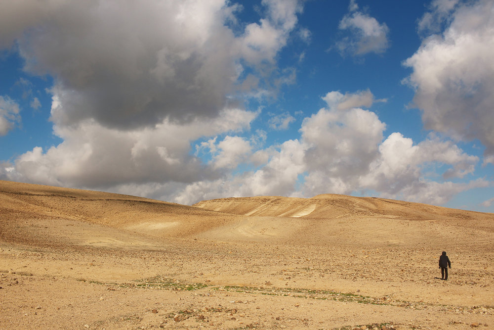Israel's Negev Desert in Winter / Travel photography by Geena Matuson @geenamatuson #thegirlmirage