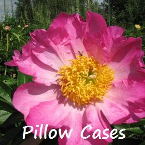 pillow cases.jpg