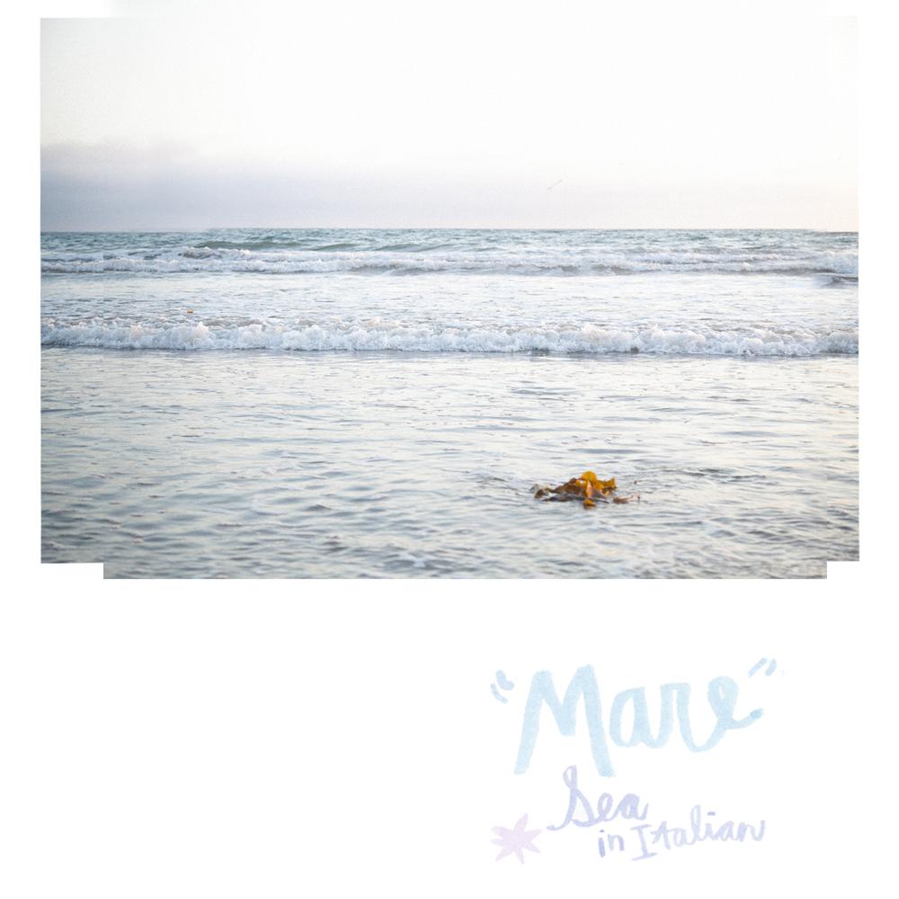 santa-monica-beach-by naomi yamada