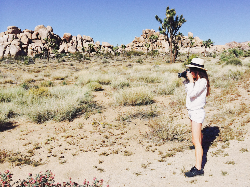 Joshua Tree California by Naomi Yamada